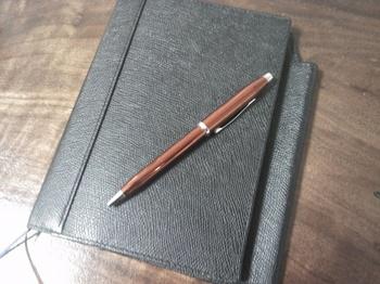 手帳とボールペン☆.JPG