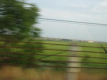 新潟の田園.JPG