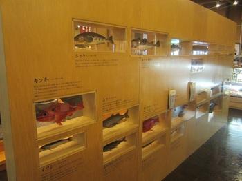 蒲鉾博物館.JPG