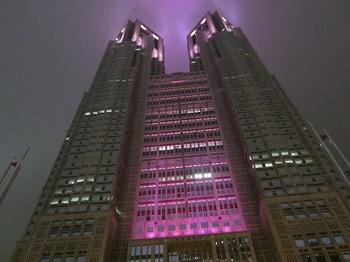 夜の都庁.JPG