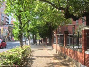 東大赤門前の通り.JPG