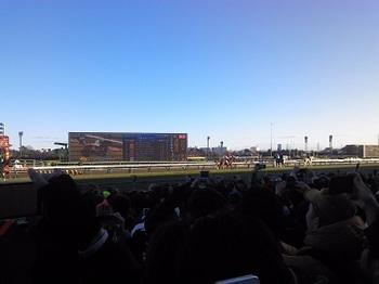 H25.12.22有馬記念オルフェーヴル.JPG